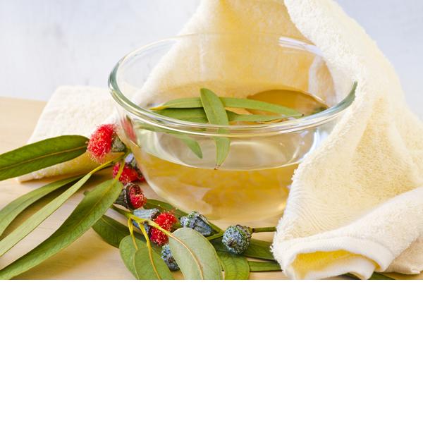 Eucalyptus Inhalation Therapy